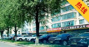 市民举报:二手车占道经营 妨碍公共交通秩序