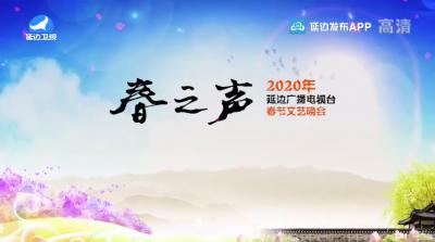 2020年春节文艺晚会第1部