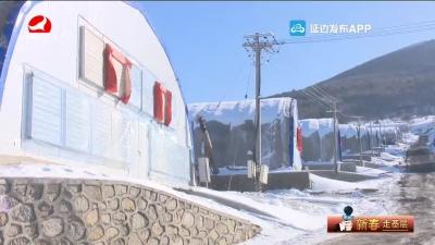 龙井市德新乡:持续巩固脱贫成果
