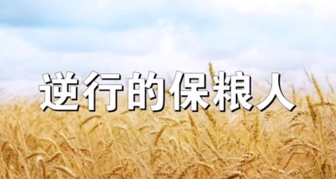 """采访日记丨""""逆行""""保粮人"""