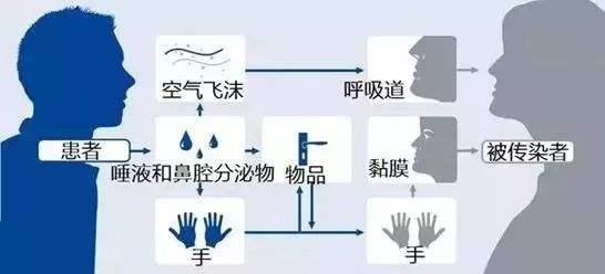 广东疾控透露真实病例细节:同乘2小时大巴后被感染!被邻居感染或因搭同一电梯!