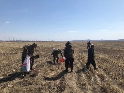 珲春市林业局动保巡护队加强巡护保护候鸟 共救治白额雁30余只