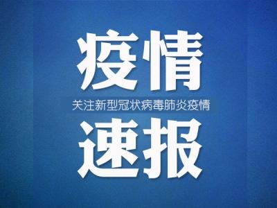 河南省新增1例新冠肺炎本地确诊病例,详情公布