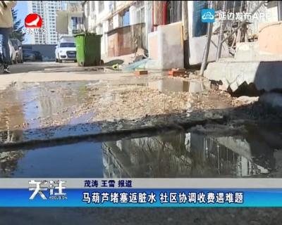马葫芦堵塞返脏水 社区协调收费遇难题