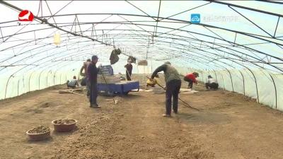 水稻播种 要掌握好温度和湿度
