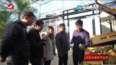 龙井市三合镇:村企党建融合发展 巩固脱贫攻坚成果