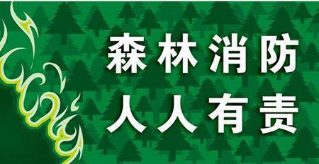 珲春发布清明节期间森林防火倡议书