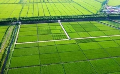吉林省今年将建成3300万亩高标准农田