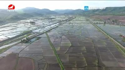 延吉市朝阳川镇:抢抓有利时机 加快水稻插秧