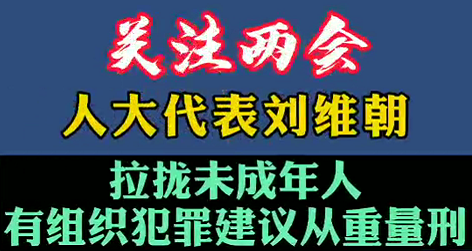 【微视频】关注两会!人大代表:建议拉拢未成年人有组织犯罪建议从重量刑!