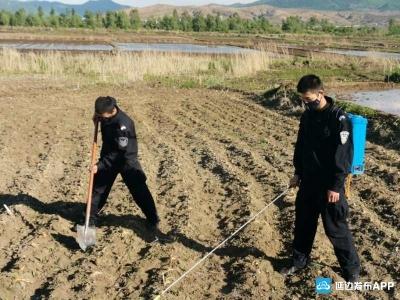龙井边境检查站民警下村干农活  服务群众展风采