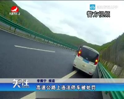 高速公路上违法停车被处罚