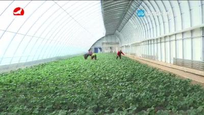 延吉市加大扶贫产业项目实施力度