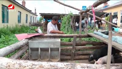 汪清:立足产业扶持 助力残疾人精准脱贫