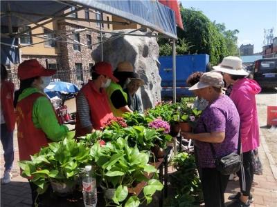 敦化市文苑社区:旧物换绿植 环保进万家