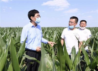 巴音朝鲁:决战决胜脱贫攻坚,扎实推进乡村振兴,着力促进农业全面升级农村全面进步农民全面发展