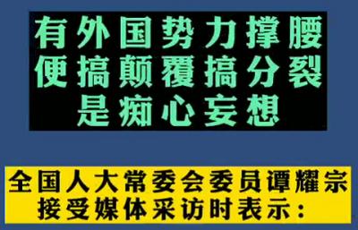 【微视频】谭耀宗委员:有外国势力撑腰便搞颠覆搞分裂,是痴心妄想!