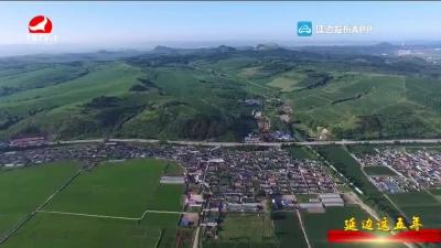 光东村:牢记总书记嘱托 书写新农村建设美丽答卷
