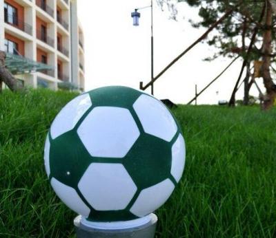 【快讯】国家体育总局副局长杜兆才到我州调研足球青训场地建设情况