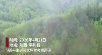 时政微视频丨青山不负人