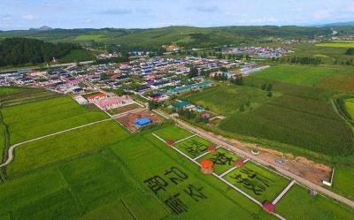 """吉林省委网信办出台""""十项措施"""" 促进乡村数字经济发展"""