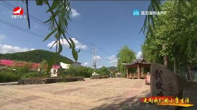 图们市水南村:加快新农村建设 阔步迈向小康社会