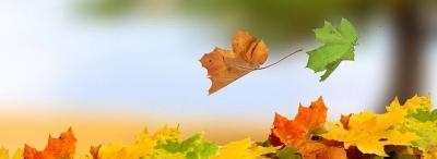 立了秋,为啥没有凉飕飕?
