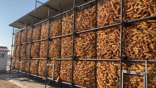 我省推广科学储粮  每年粮食减损至少8.6亿斤