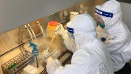 云南瑞丽城区全员核酸检测完成 28.7万余份样本均为阴性