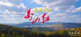 【视频】美丽中国·鲜到延边!层林尽染万山红!