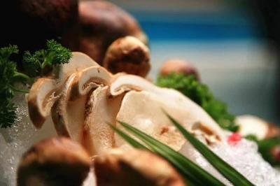 【广电快讯】松茸烹饪大赛火热进行中 带你领略一场视觉+味觉的盛宴!