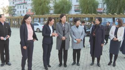 """【视频新闻】李悦到我州调研妇女儿童""""两个规划""""实施情况"""