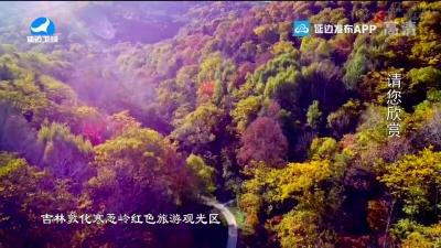 生活广角 2020-10-29