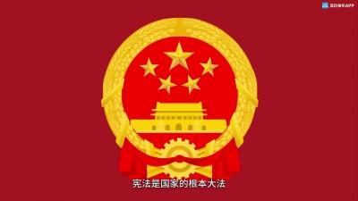 参与宪法宣传周 依法治国在行动