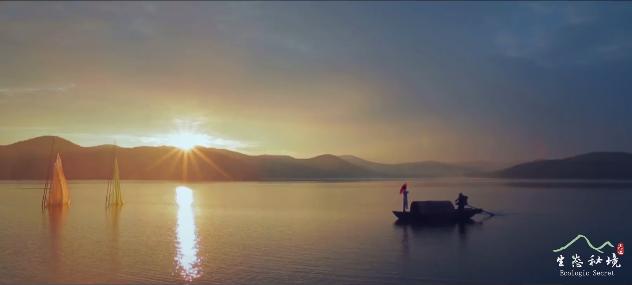 【视频】美丽中国·鲜到延边!波光荡漾亚光湖,斑阑湿地百花图!