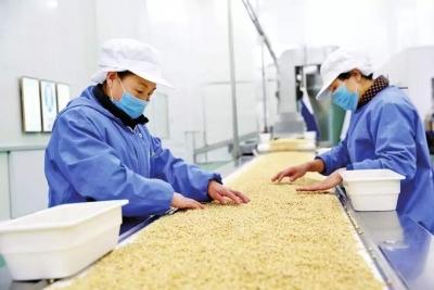吉林省4家基地入围国家外贸转型升级基地