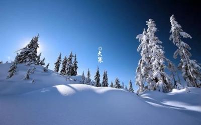 今日大寒丨凛冬将尽,静待春来
