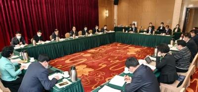 """吉林代表团分组审议政府工作报告 审查""""十四五""""规划和2035年远景目标纲要草案"""