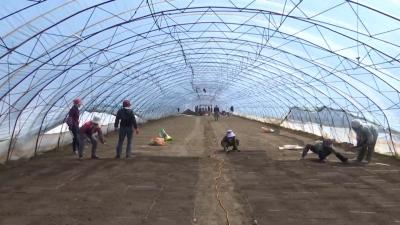 【视频新闻】抢抓农时 我州农村有序推进备春耕