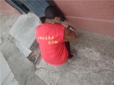 丹进社区组织志愿者开展春季除四害活动