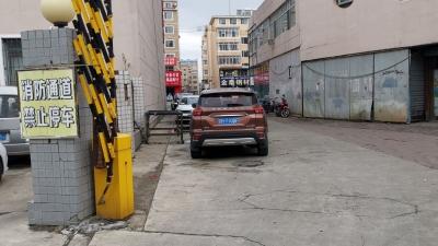 网友建议,延吉发展大坡路段应设置箭头式指示灯