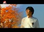 [노래] 타향산 단풍-김문유