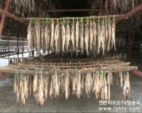 TV 문화를 품다 제24회 방송정보