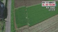 일본지진, 가지런하던 밭고랑 어긋나