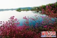 5월은 룡만관광축제의 달