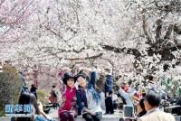 4월 할빈, 늦은 봄꽃은 더 아름다워