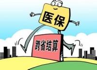 위생계획출산위원회: 2017년 입원비 타지역 결산 실현한다