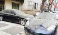방치된 포르쉐와 BMW,부자들의 기싸움
