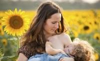 모유 수유 때도 술 마시면 아기에 악영향