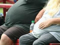 세계 인구 3분의 1은 '영양실조에 빠진 비만 인구'